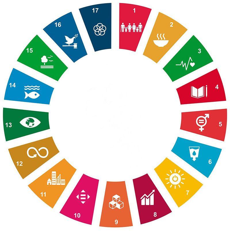 SDG ziele für nachhaltige entwicklung